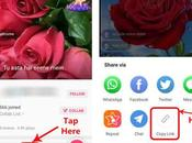 Download Songs from Sargam App?