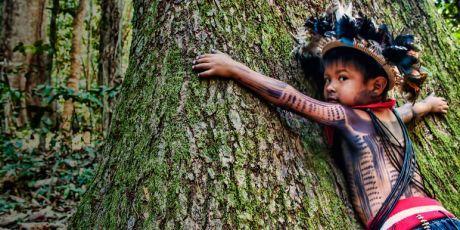 Let's Stop The Amazon Apocalypse!
