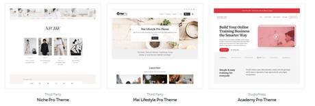 Best Small Business WordPress Themes, wordpress, studiopress, website, themes