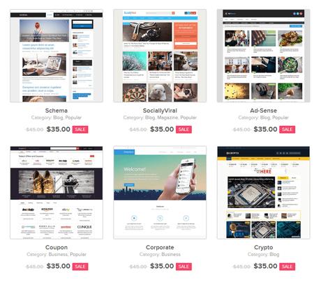 Best Small Business WordPress Themes, wordpress, studiopress, website, themes, apollo13, rife, mythemeshop