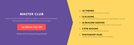 Best Small Business WordPress Themes, wordpress, studiopress, website, themes, cssigniter, themify