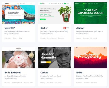 Best Small Business WordPress Themes, wordpress, studiopress, website, themes, apollo13, rife, mythemeshop, templatemonster, themeisle, teslathemes, premiumcoding, themeum