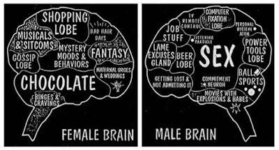 Some thoughts on Cups, the extreme male brain theories of autism and genderless society