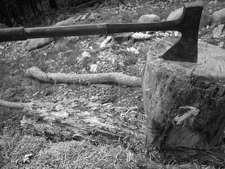 axe-blade-block-carpentry-cut-deforestation