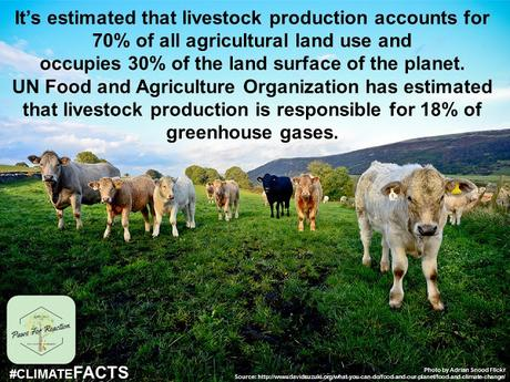 Climate Facts Animal Agriculture