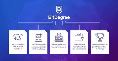 BitDegree Review 2019: Is It the Best eLearning Platform (My Opinion)