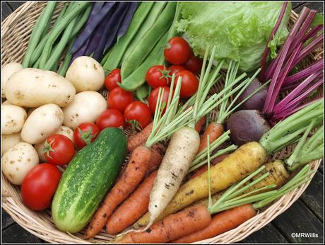 The benefits of a colourful harvest