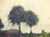 Tips Camping Rain