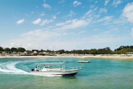 Top 5 Best Beaches To Visit In Saudi Arabia