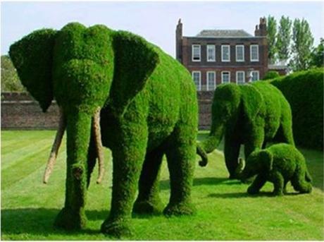 Elefantasy