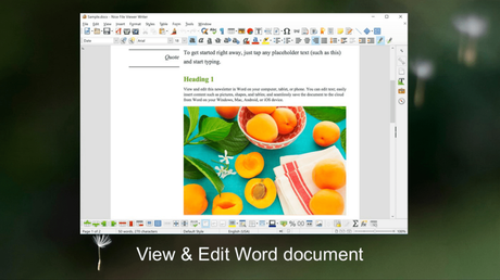 open any file format using nice file viewer for windows 10