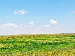 Inner Mongolia... Sand Dunes, Pagodas & Grasslands!