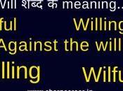 Wilful