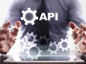 Beginner's Guide Using APIs Business