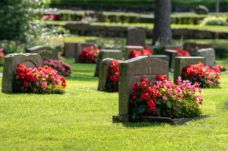 Rest in Peace: 13 Alternative Types of Burials for You to Consider