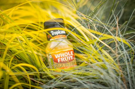 Fitness On Toast Faya Blog Girl Healthy Workout Breakfast On The Go Training Snack Hydration Rehydrate Juice Fresh Orange Tropicana Fibre New London-3