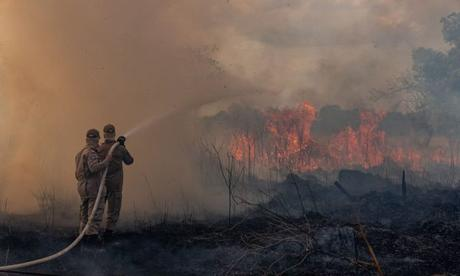 brazil-amazon-fires