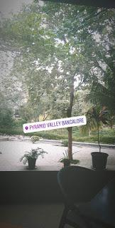 Exploring Pyramid Valley and my Public Transport Fiasco