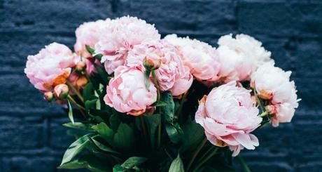 Floraqueens Flowers Delivery Munich