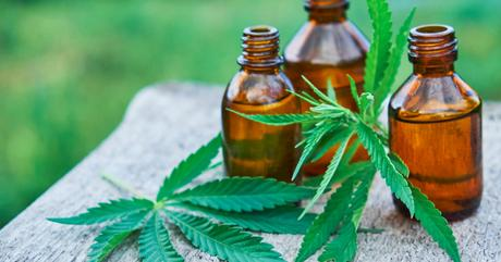 Understanding the Impact of CBD on Your Body