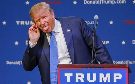 Image result for stupid trump