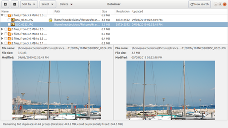 Detwinner Linux Edition 0.2.2