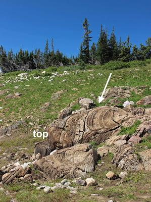 Communicating Earth Science: Stromatolite Stroll