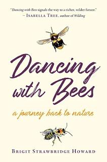Book Review - Dancing with Bees by Brigit Strawbridge Howard