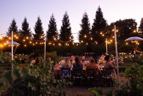 Sunset Vineyard Dinner with Dry Creek Vineyard