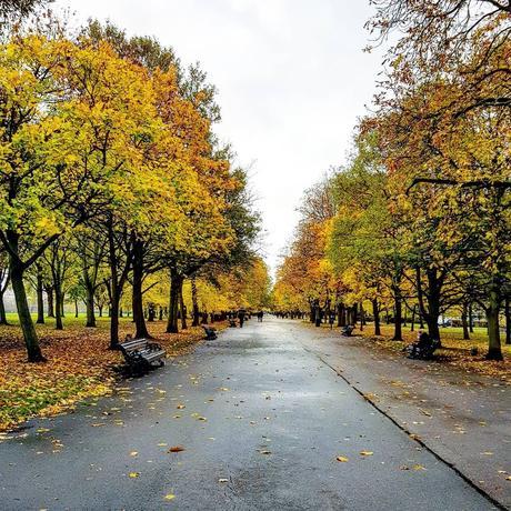 Lifestyle   Autumn Date Ideas