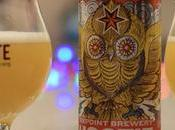 Beer Review Sixpoint Hootie Hazy India Pale