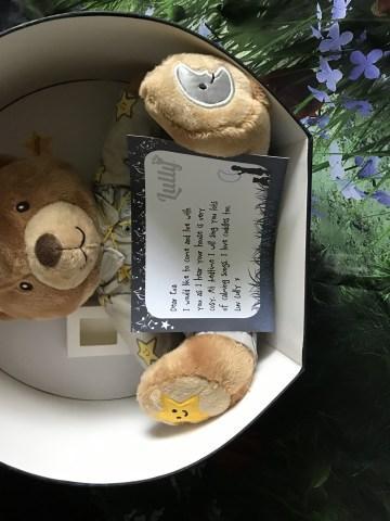 Lully bear