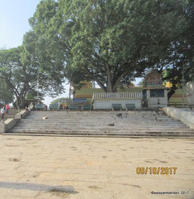 The Twin Devis of Srirangapatna