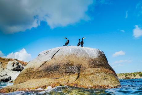 Walk on ancient rocks