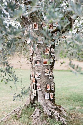 outdoor wedding ideas photo tree tunk