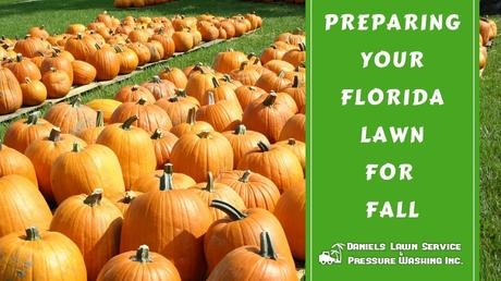 Preparing Your Florida Lawn for Fall