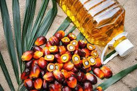 When Malaysian Palm Oil goes the Bollywood Way