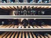 Choose Perfect Wine Fridge