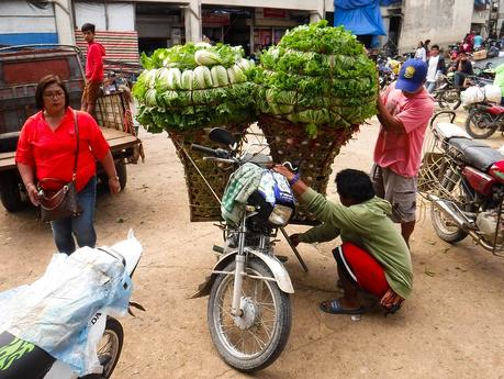 Motorcycle with vegetables