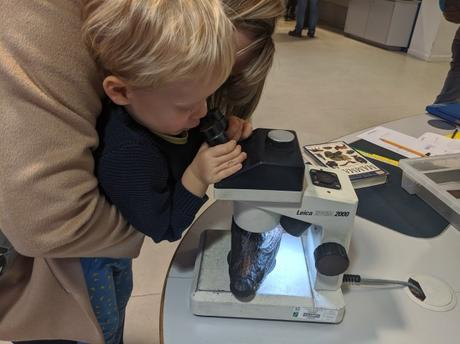Take your child to Investigate at The Natural History Museum, London