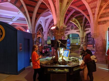 Visit Brighton's Sea Life Centre