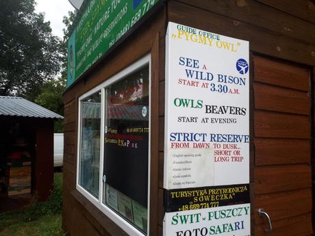 Touring UNESCO World Heritage Sites: A Guide to Poland's Białowieża Primeval Forest
