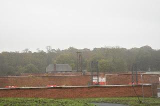 A rainy afternoon at RHS Bridgewater