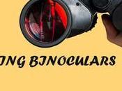 Best Birding Binoculars Picks (2019-2020)