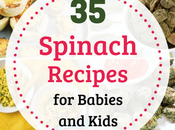 Healthy Spinach Recipes Babies Kids