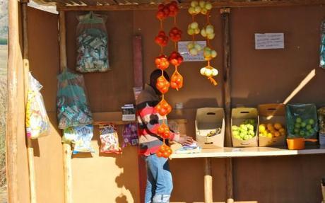 zulu village store