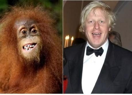 Boris Johnson: London's first mayor to look (almost exactly) like an orangutan
