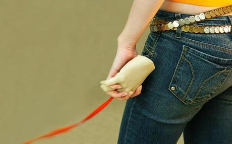 Hand Dog Leash Makes Taking Fido for Walkies a More Human Experience