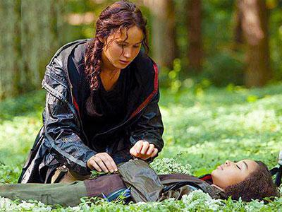Rue from Hunger Games Racist Tweets?