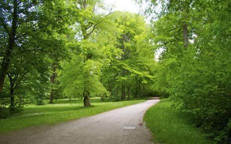 english garden munich path